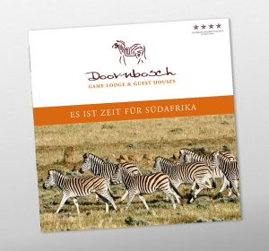 <span>Doornbosch Game Lodge and Guesthouses</span><i>→</i>